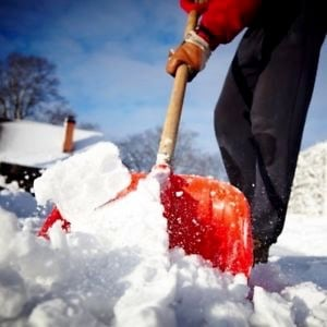 Snow Removal (Northeast area)