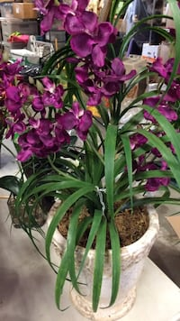 Purple Orchid Silk Flower Arrangement.  New.  never water again.  blooms all year long. Cottonwood, 96022