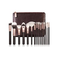 Makeup brushes 15 pc set Toronto, M4C 2G8