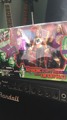 Wwf Team Xtreme Action Figures, used for sale  Wilmington, MA