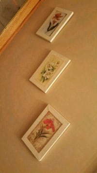 Set of 3 Cavas Framed Wall Art/Pictures. Delta, V4M 4E1