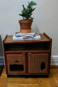 Antique Cane front End Table/Side Table
