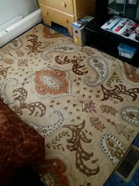Pier 1 Imports Paisley rug 5'x7'