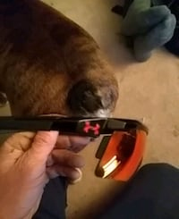Under armour sunglases