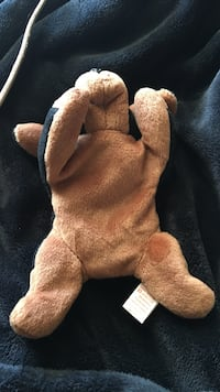 Rare Doby beanie baby!! No stamp inside tush tag!!  Berlin, 06037