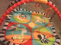 baby's multicolored activity gym Edmonton, T5W 4R4