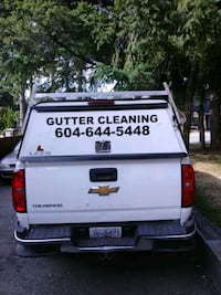 Gutter cleaning Delta