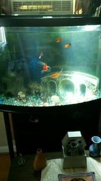 40gal fish tank w/stand Phenix City