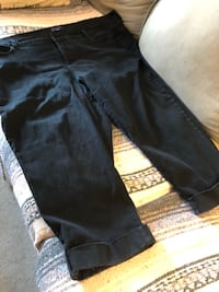 Plus size dress pants size 1X or 2X or 22 size asking $10 see pictures Burnaby, V5E 0A4