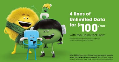 Cricket Wireless Inkster