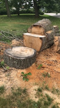 Free oak wood- must cut and remove your self. Large trunk and a few smaller pieces already cut  Glen Rock, 17327