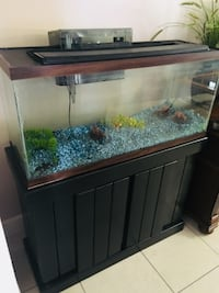 Cuboid brown framed clear glass fish tank 30 gallons  Miami, 33183