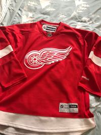 Detroit Red Wings Hockey Jersey Large