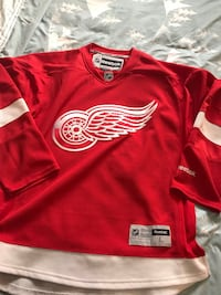 Detroit Red Wings Hockey Jersey Large Surrey