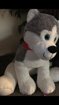 Grey and white siberian husky plush toy 2252 mi
