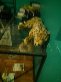 brown and black leopard plush toy