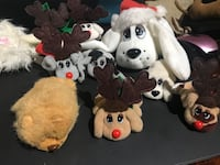 Lot of Pound Puppies Charlotte, 28212