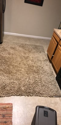 shag rug.. looks better in person ( low light) was $200 Chico, 95928