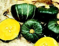 100+ Seeds Burgess Buttercup Squash Baltimore