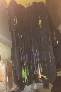 Arrows for compound bow with case