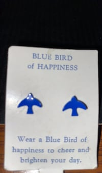 Blue bird earnings