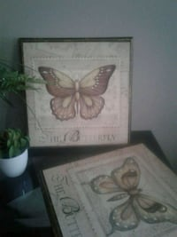 2 butterfly pictures Kitchener, N2K 4J7