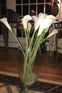 Glass vase with 24 in calilillies