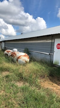 Gas tank1000 gals Chicken house fans, gas tanks , feeders, drinkers Bay Springs, 39422
