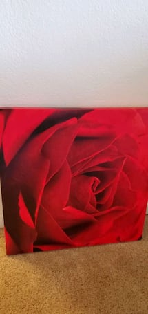 Rose canvas wall decor