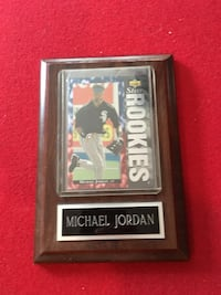 Michael Jordan Baseball Rookie Card with plaque Wood Dale, 60191