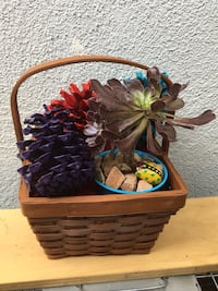 Succulent in a Lovely Basket  Los Angeles, 91342
