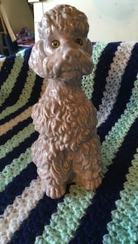 Poodle dog about 11 inches high