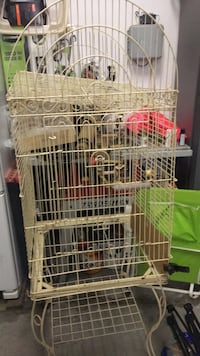 white and green bird cage