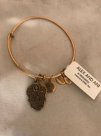 silver-colored Alex and Ani charm bracelet McAllen, 78504