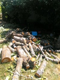 Free wood in Lacey  Olympia, 98501