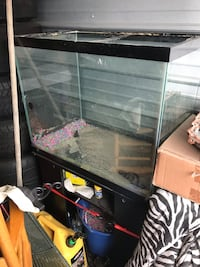 Black framed clear glass fish tank and stand