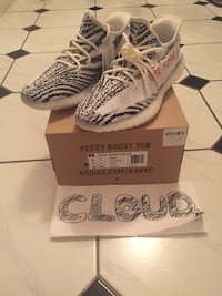 pair of Zebra Adidas Yeezy Boost 350 V2 with box Brampton, L6V 3P2