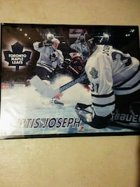 Curtis Joseph Framed Picture