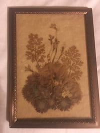 Vintage framed dried flowers