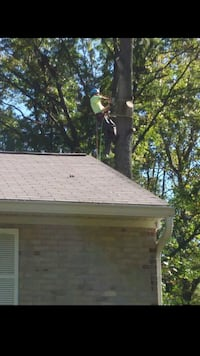 tree cutting and landscaping service Laurel, 20707