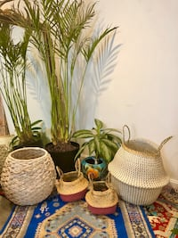 BRAND NEW Handwoven Baskets