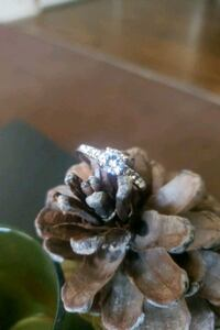 Womans diamond ring.