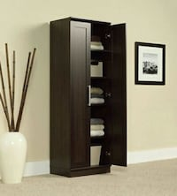 Sauder Homeplus Storage Cabinet Houston, 77042