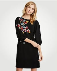 Ann taylor floral dress nwt xsp Fairfax, 22030