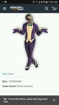 Joker rubies costume Windsor, N8R 1B7