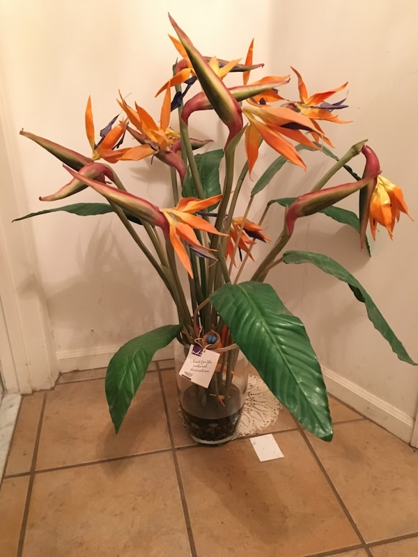 Used ndi flower arrangements bird of paradise for sale in miramar ndi flower arrangements bird of paradise mightylinksfo
