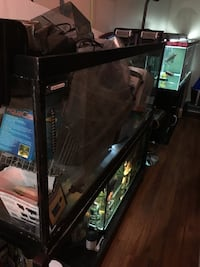 Hagen 110 gal aquarium  thick glass and steel frame stand