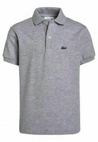 Polo lacoste gris Freyming-Merlebach, 57800
