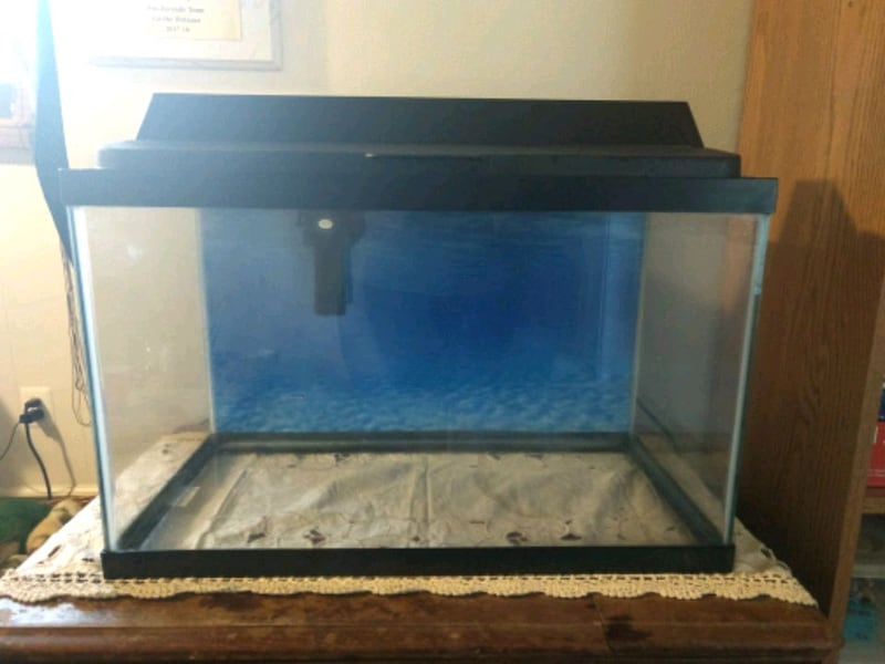 10 gallon fish tank with light and filter 0