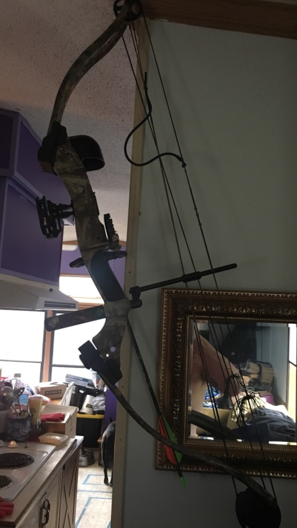 Compound bow and case